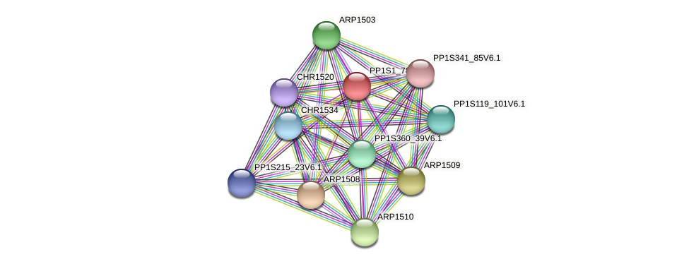 PP1S1_784V6.1 protein (Physcomitrella patens) - STRING interaction network