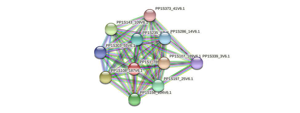 PP1S1_785V6.1 protein (Physcomitrella patens) - STRING interaction network