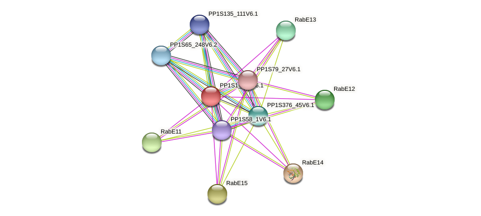 PP1S1_786V6.1 protein (Physcomitrella patens) - STRING interaction network