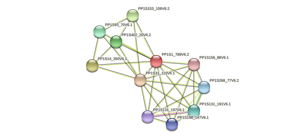 PP1S1_789V6.1 protein (Physcomitrella patens) - STRING interaction network