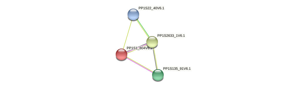 PP1S1_804V6.1 protein (Physcomitrella patens) - STRING interaction network