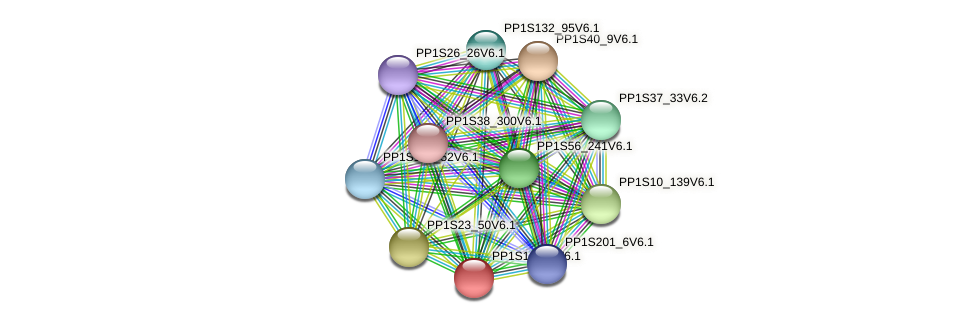 PP1S1_815V6.1 protein (Physcomitrella patens) - STRING interaction network