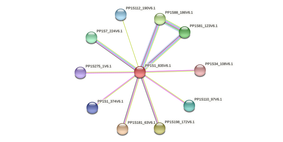 PP1S1_835V6.1 protein (Physcomitrella patens) - STRING interaction network