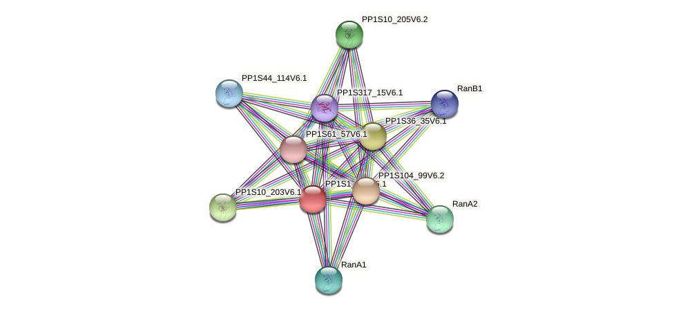 PP1S1_845V6.1 protein (Physcomitrella patens) - STRING interaction network