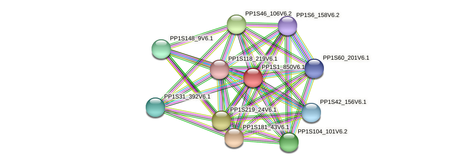 PP1S1_850V6.1 protein (Physcomitrella patens) - STRING interaction network