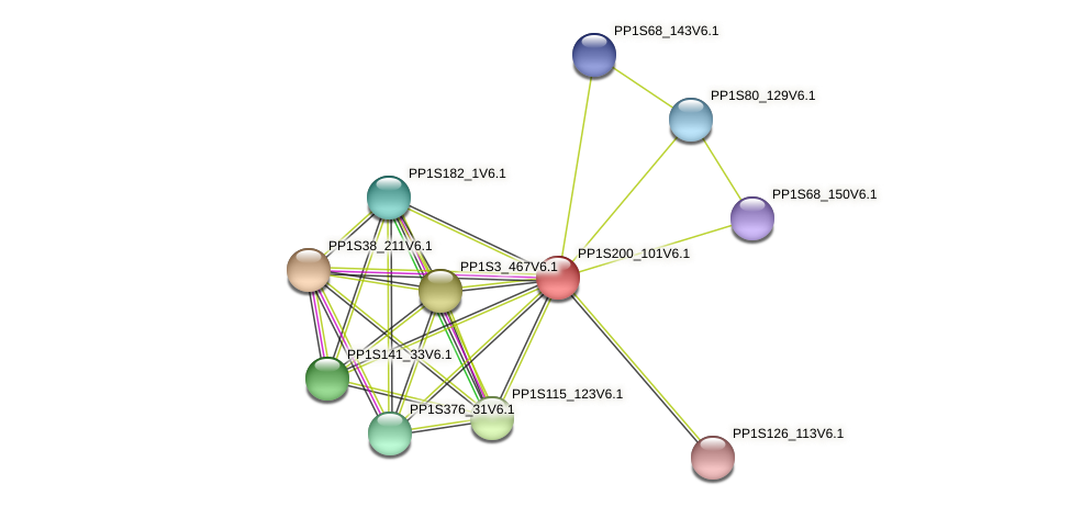 PP1S200_101V6.1 protein (Physcomitrella patens) - STRING interaction network