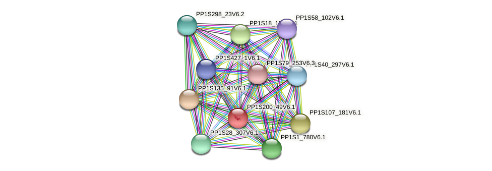 PP1S200_49V6.1 protein (Physcomitrella patens) - STRING interaction network