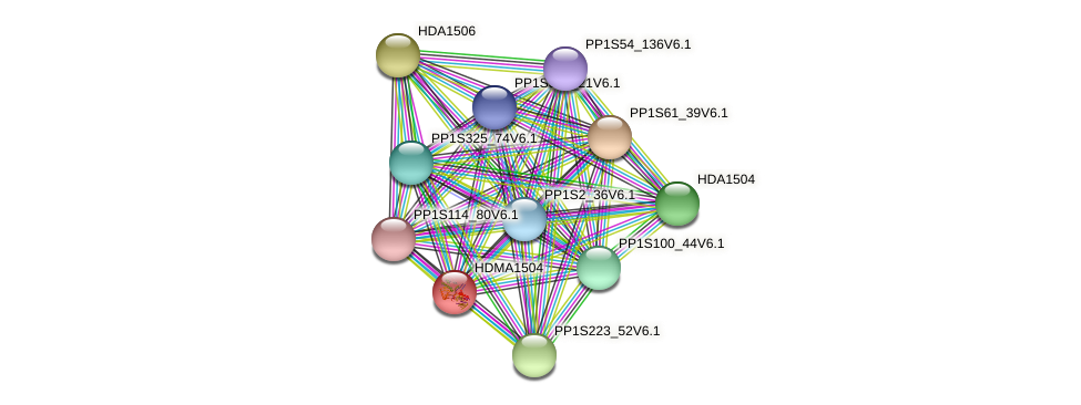 HDMA1504 protein (Physcomitrella patens) - STRING interaction network
