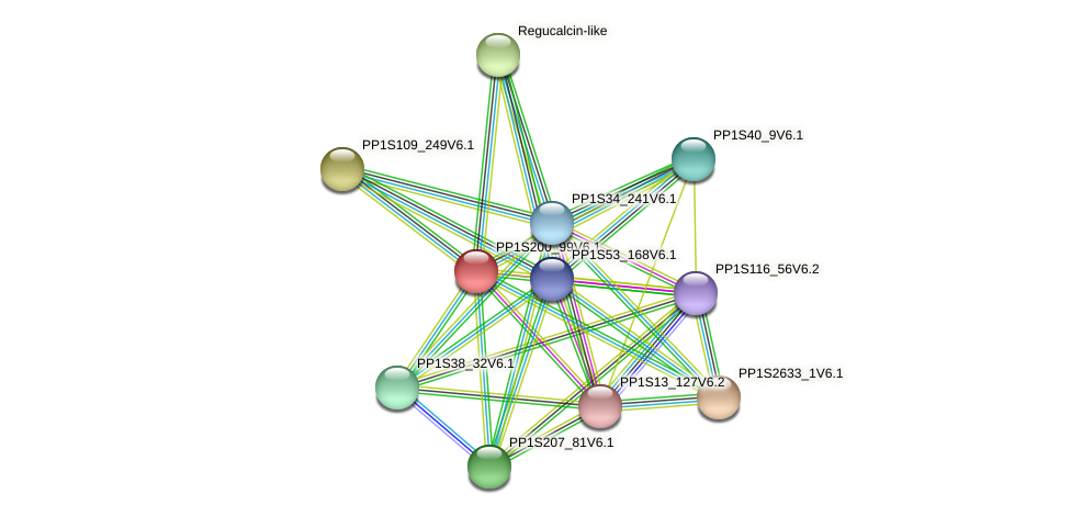 PP1S200_99V6.1 protein (Physcomitrella patens) - STRING interaction network