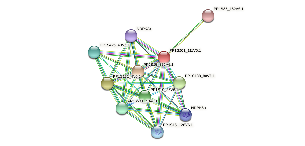 PP1S201_111V6.1 protein (Physcomitrella patens) - STRING interaction network