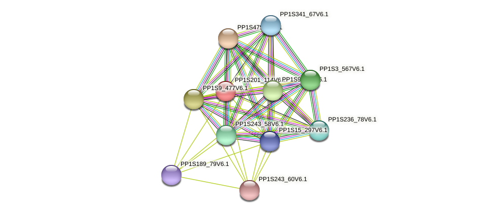 PP1S201_114V6.1 protein (Physcomitrella patens) - STRING interaction network