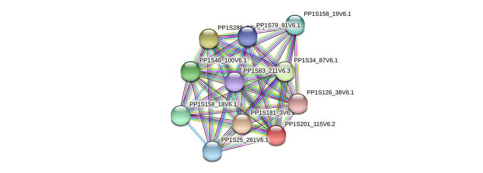 PP1S201_115V6.2 protein (Physcomitrella patens) - STRING interaction network