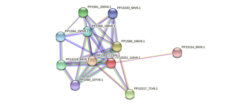 PP1S201_116V6.1 protein (Physcomitrella patens) - STRING interaction network