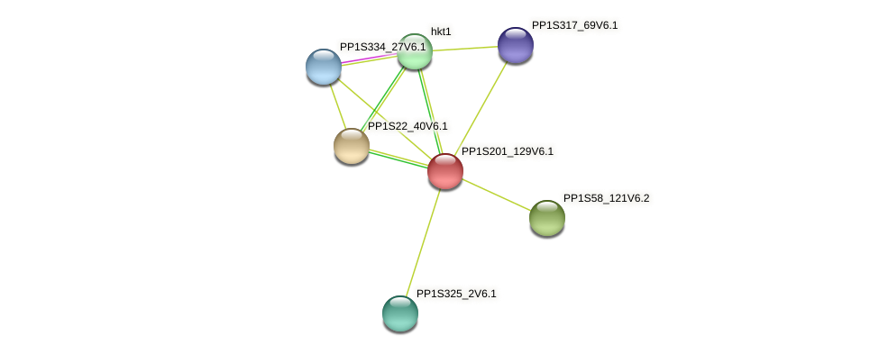 PP1S201_129V6.1 protein (Physcomitrella patens) - STRING interaction network