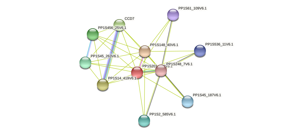 PP1S201_138V6.1 protein (Physcomitrella patens) - STRING interaction network