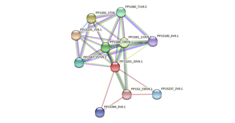 PP1S201_20V6.1 protein (Physcomitrella patens) - STRING interaction network