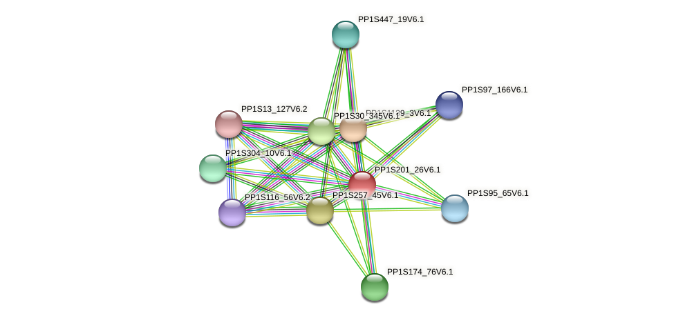 PP1S201_26V6.1 protein (Physcomitrella patens) - STRING interaction network