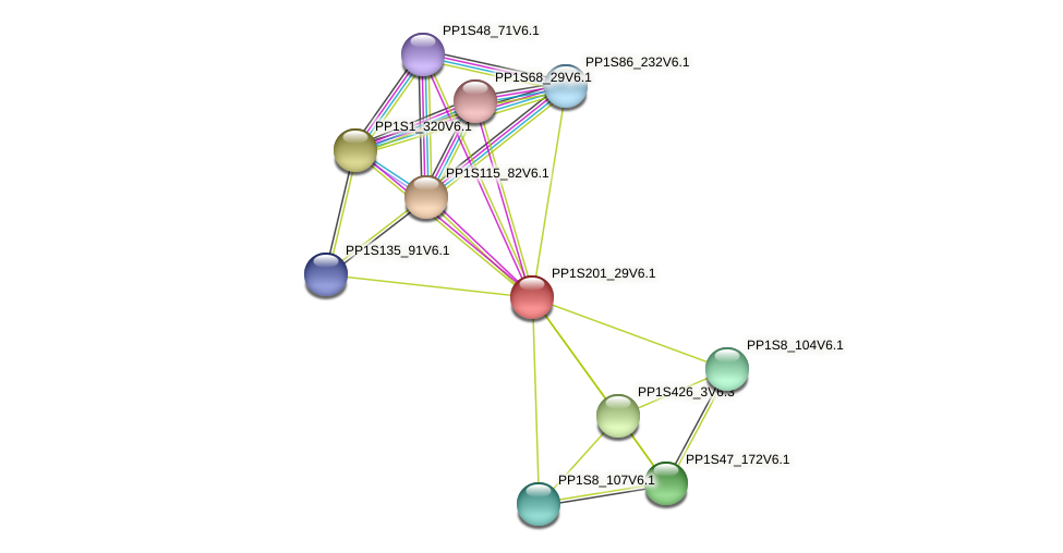 PP1S201_29V6.1 protein (Physcomitrella patens) - STRING interaction network