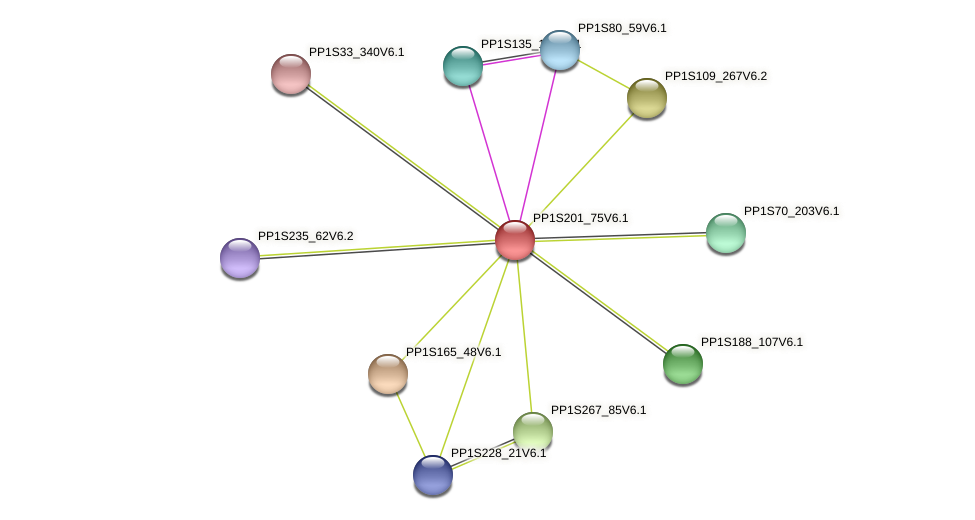 PP1S201_75V6.1 protein (Physcomitrella patens) - STRING interaction network