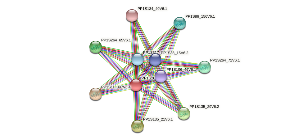 PP1S201_82V6.1 protein (Physcomitrella patens) - STRING interaction network