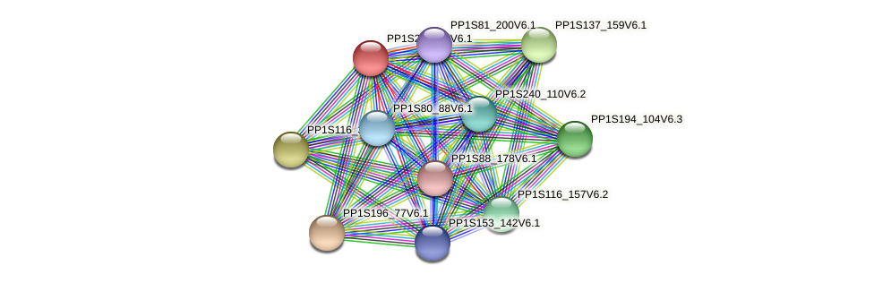 PP1S201_97V6.1 protein (Physcomitrella patens) - STRING interaction network