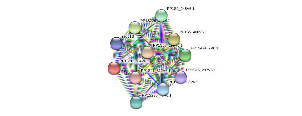 PP1S202_64V6.1 protein (Physcomitrella patens) - STRING interaction network