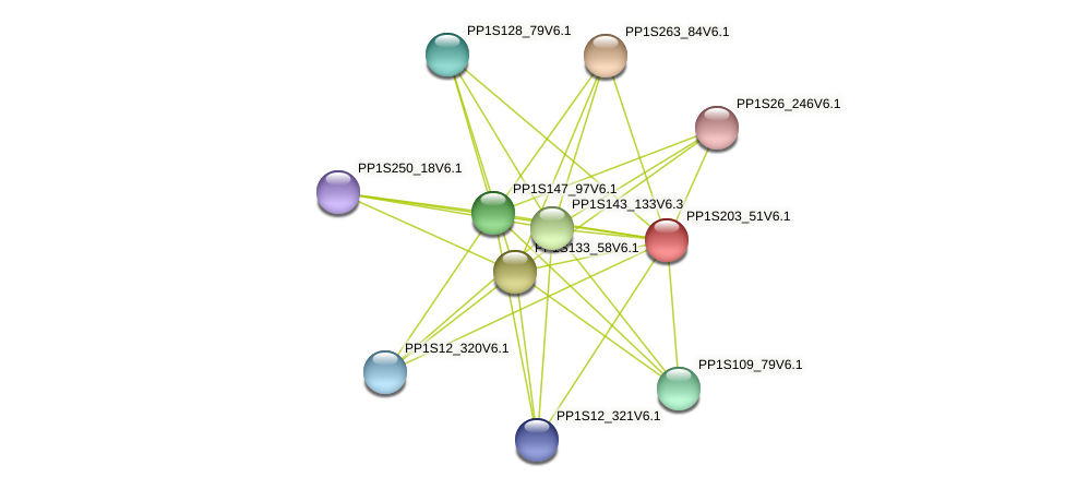 PP1S203_51V6.1 protein (Physcomitrella patens) - STRING interaction network