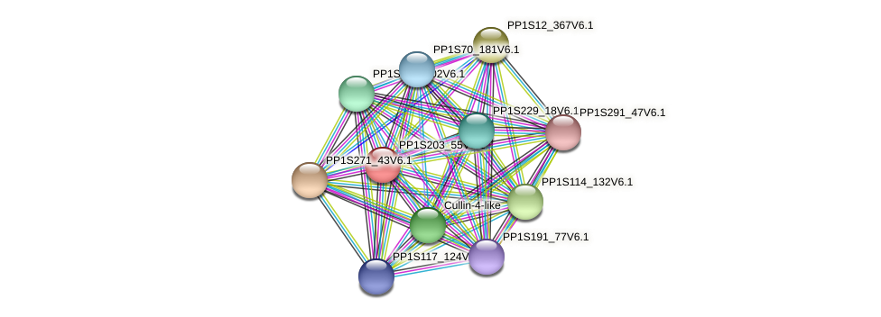 PP1S203_55V6.1 protein (Physcomitrella patens) - STRING interaction network