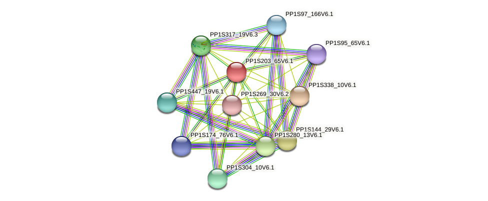 PP1S203_65V6.1 protein (Physcomitrella patens) - STRING interaction network