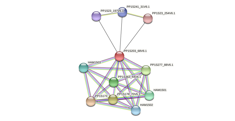PP1S203_68V6.1 protein (Physcomitrella patens) - STRING interaction network