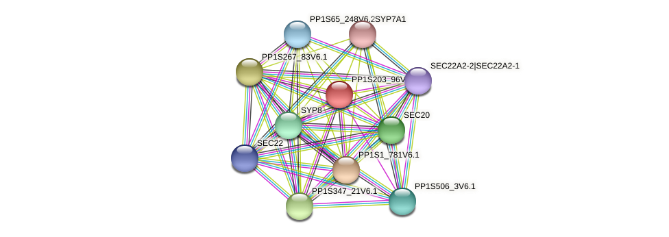 PP1S203_96V6.1 protein (Physcomitrella patens) - STRING interaction network