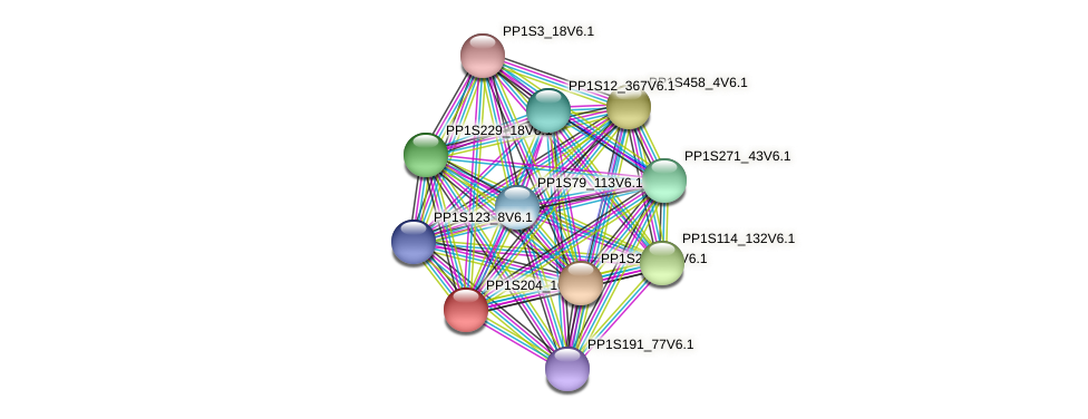 PP1S204_102V6.1 protein (Physcomitrella patens) - STRING interaction network