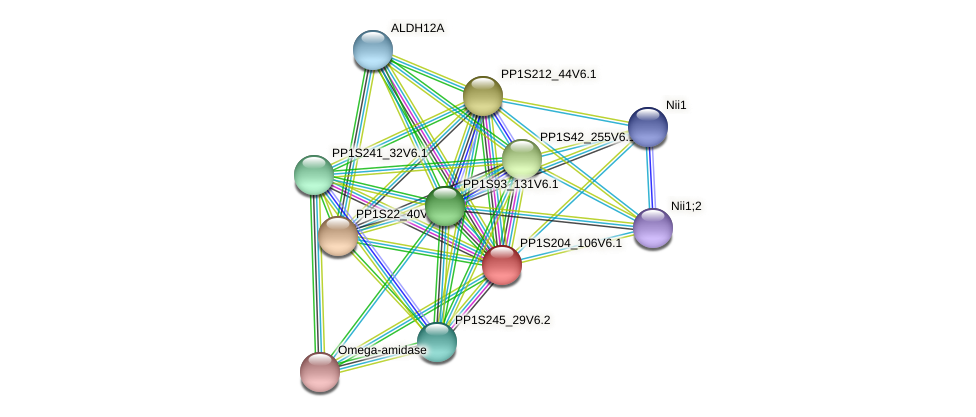 PP1S204_106V6.1 protein (Physcomitrella patens) - STRING interaction network