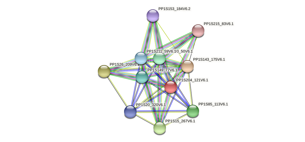 PP1S204_121V6.1 protein (Physcomitrella patens) - STRING interaction network