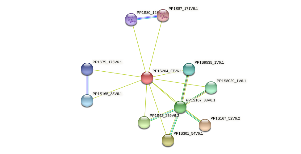 PP1S204_27V6.1 protein (Physcomitrella patens) - STRING interaction network