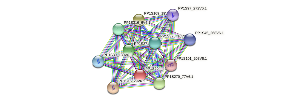 PP1S204_49V6.1 protein (Physcomitrella patens) - STRING interaction network