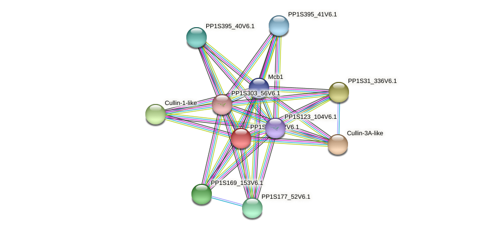 PP1S205_22V6.1 protein (Physcomitrella patens) - STRING interaction network