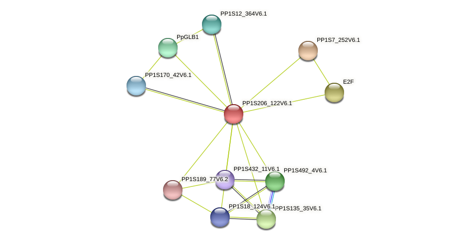 PP1S206_122V6.1 protein (Physcomitrella patens) - STRING interaction network
