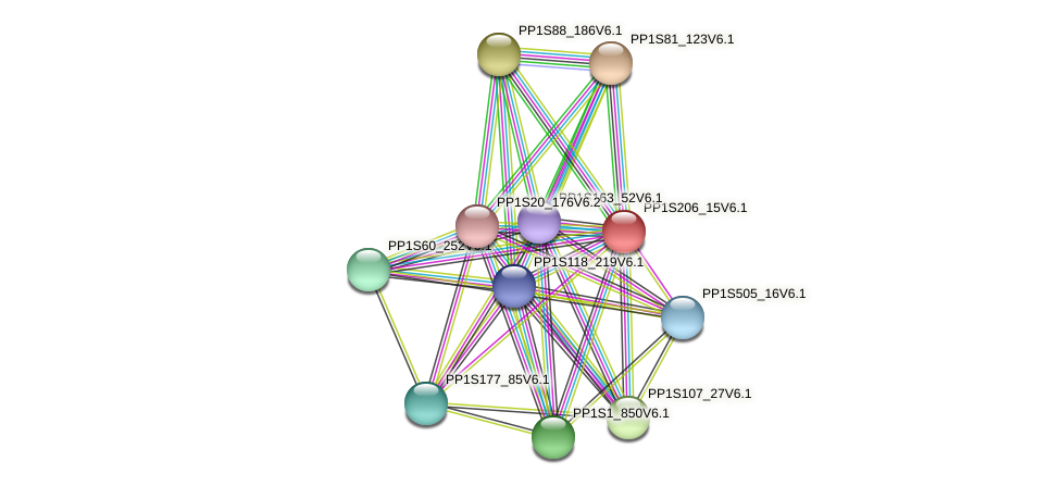 PP1S206_15V6.1 protein (Physcomitrella patens) - STRING interaction network