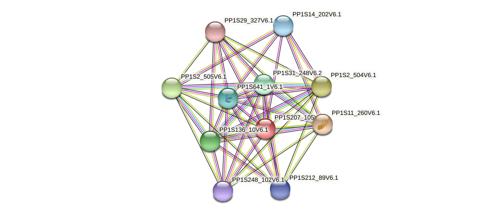 PP1S207_105V6.1 protein (Physcomitrella patens) - STRING interaction network