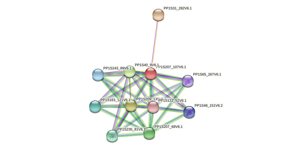 PP1S207_107V6.1 protein (Physcomitrella patens) - STRING interaction network