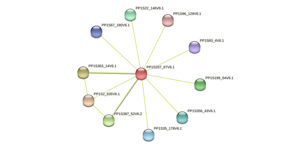 PP1S207_67V6.1 protein (Physcomitrella patens) - STRING interaction network