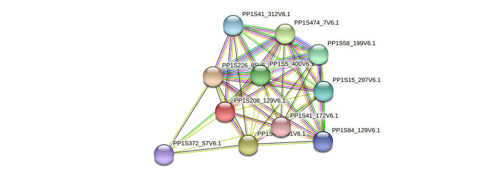 PP1S208_129V6.1 protein (Physcomitrella patens) - STRING interaction network