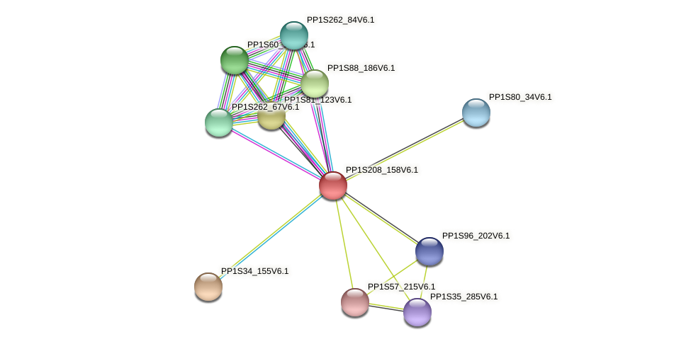 PP1S208_158V6.1 protein (Physcomitrella patens) - STRING interaction network