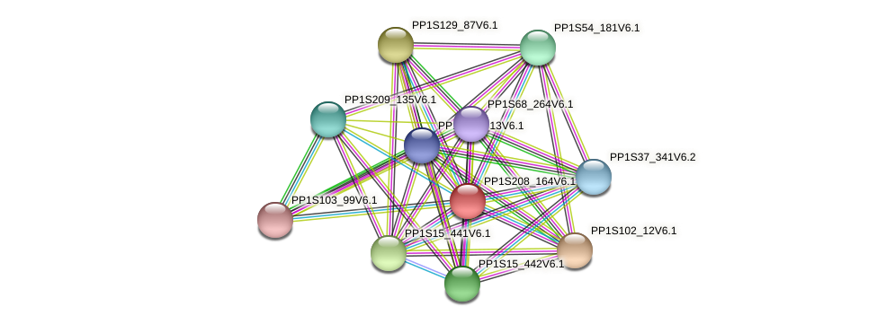 PP1S208_164V6.1 protein (Physcomitrella patens) - STRING interaction network