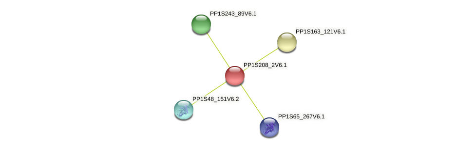 PP1S208_2V6.1 protein (Physcomitrella patens) - STRING interaction network