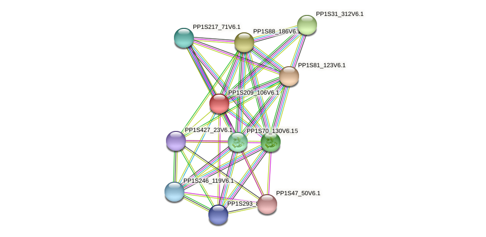 PP1S209_106V6.1 protein (Physcomitrella patens) - STRING interaction network
