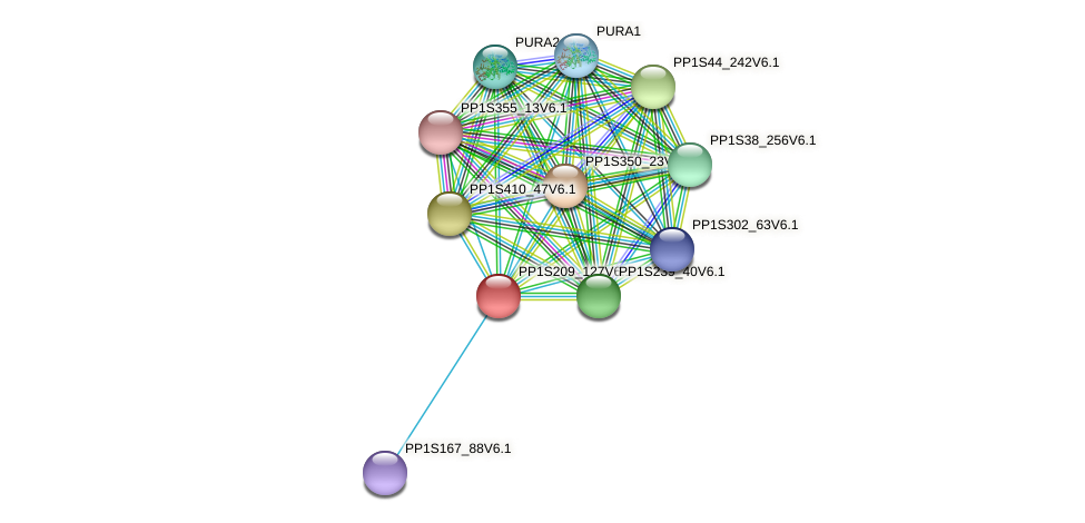 PP1S209_127V6.1 protein (Physcomitrella patens) - STRING interaction network