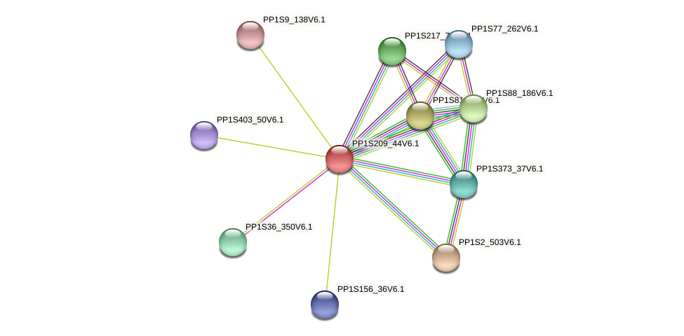 PP1S209_44V6.1 protein (Physcomitrella patens) - STRING interaction network