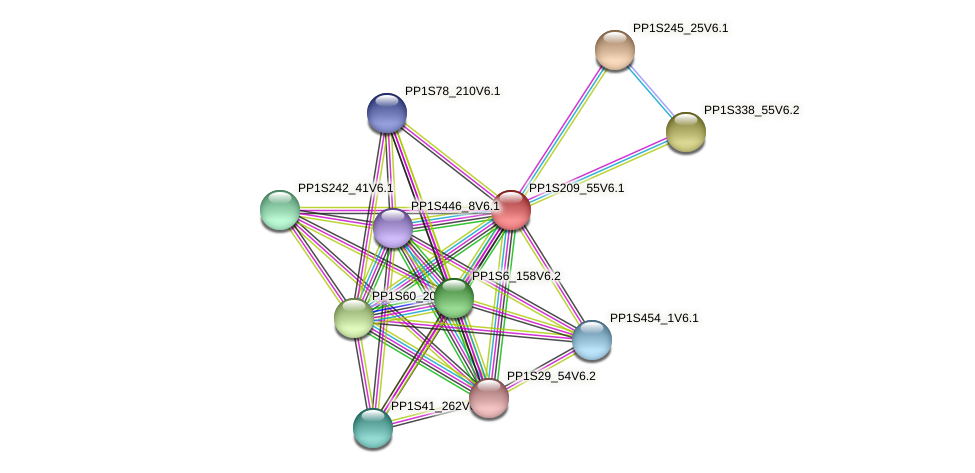 PP1S209_55V6.1 protein (Physcomitrella patens) - STRING interaction network